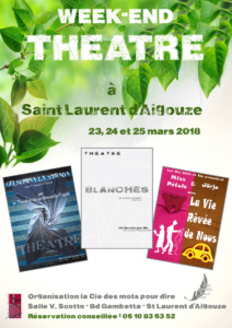 Cie dmpd affiche WEB we theatre 2018